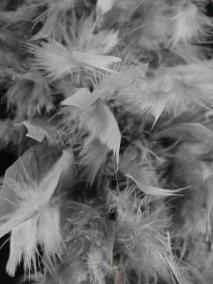 Beautiful Dark Silver Grey Feather Boa – 50g -180cm