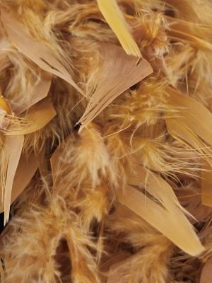 Beautiful Gold Feather Boa – 50g -180cm